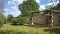 A vendre Loupian 3415127744 S'antoni immobilier jmg
