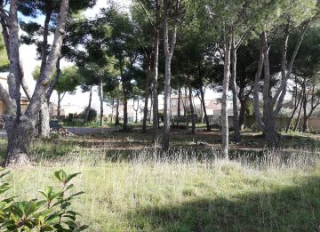 For sale Bouzigues 3415134019 S'antoni real estate
