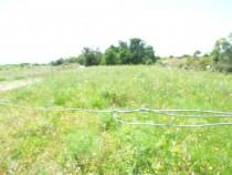 A vendre Bouzigues 341534651 S'antoni immobilier agde