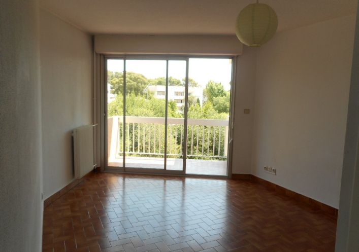 For rent Montpellier 34168196 Frances immobilier