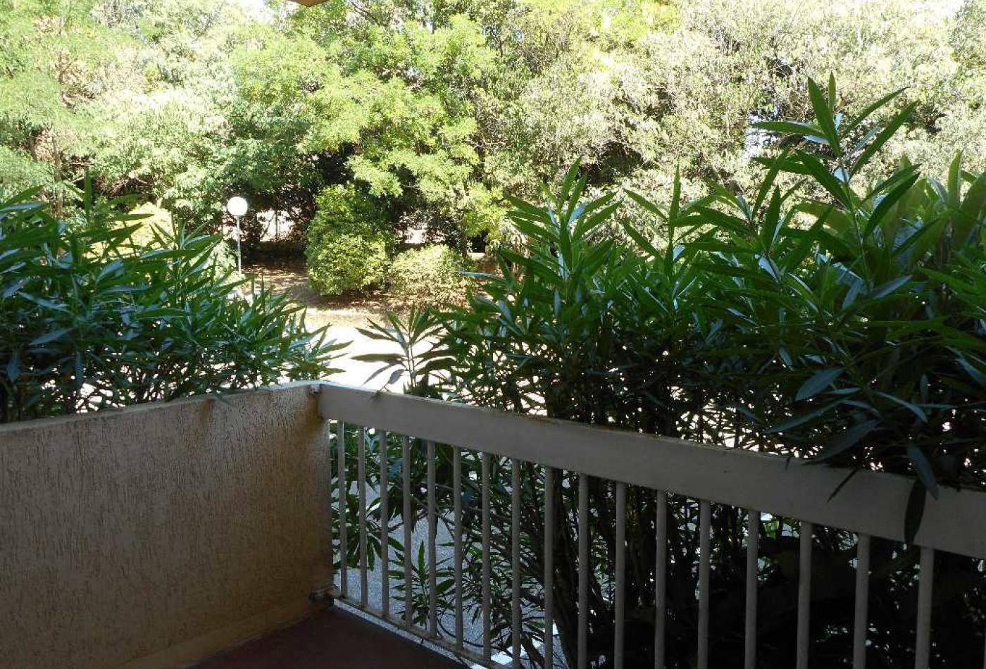A louer Montpellier 341682057 Frances immobilier