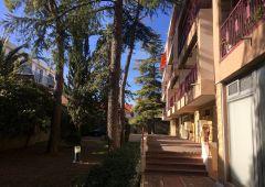 A louer Montpellier 341682281 Frances immobilier