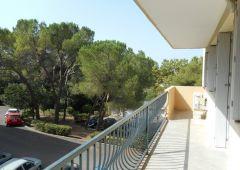 A louer Montpellier 34168443 Frances immobilier