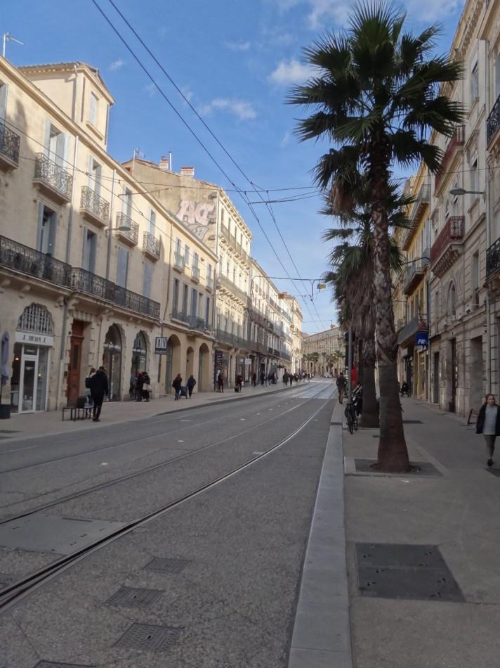 A vendre Montpellier 3418910615 Altimmo-entreprise