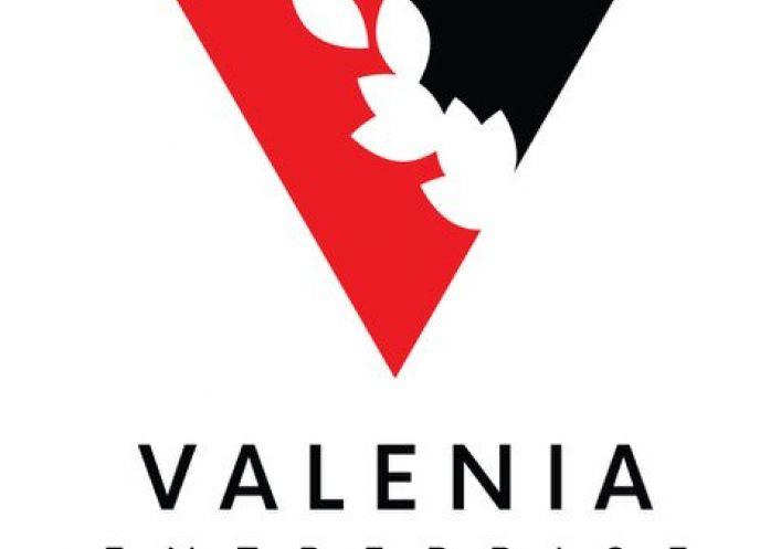 A louer Toulouse 3418910622 Valenia-entreprise