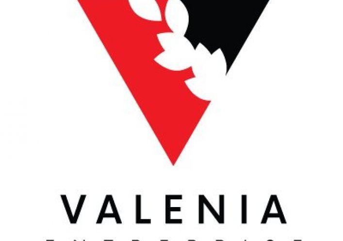 A louer L'union 3418910638 Valenia-entreprise