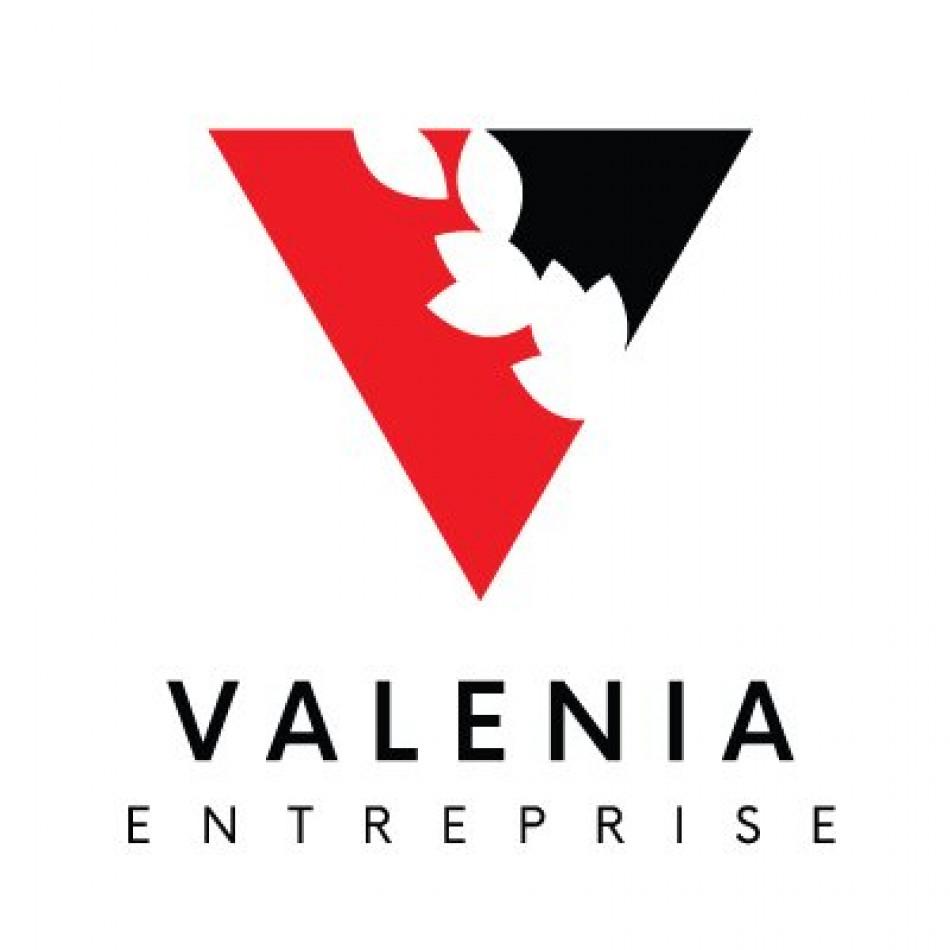 A louer Pamiers 341899821 Valenia-entreprise