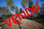A vendre Montferrier Sur Lez 341923719 Majord'home immobilier