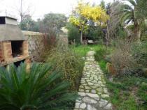 A vendre Marseillan 3419929566 S'antoni immobilier agde centre-ville