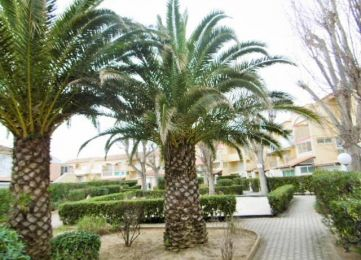 A vendre Marseillan Plage 3420228748 S'antoni immobilier marseillan plage