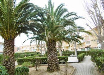 For sale Marseillan Plage 3420228748 S'antoni real estate