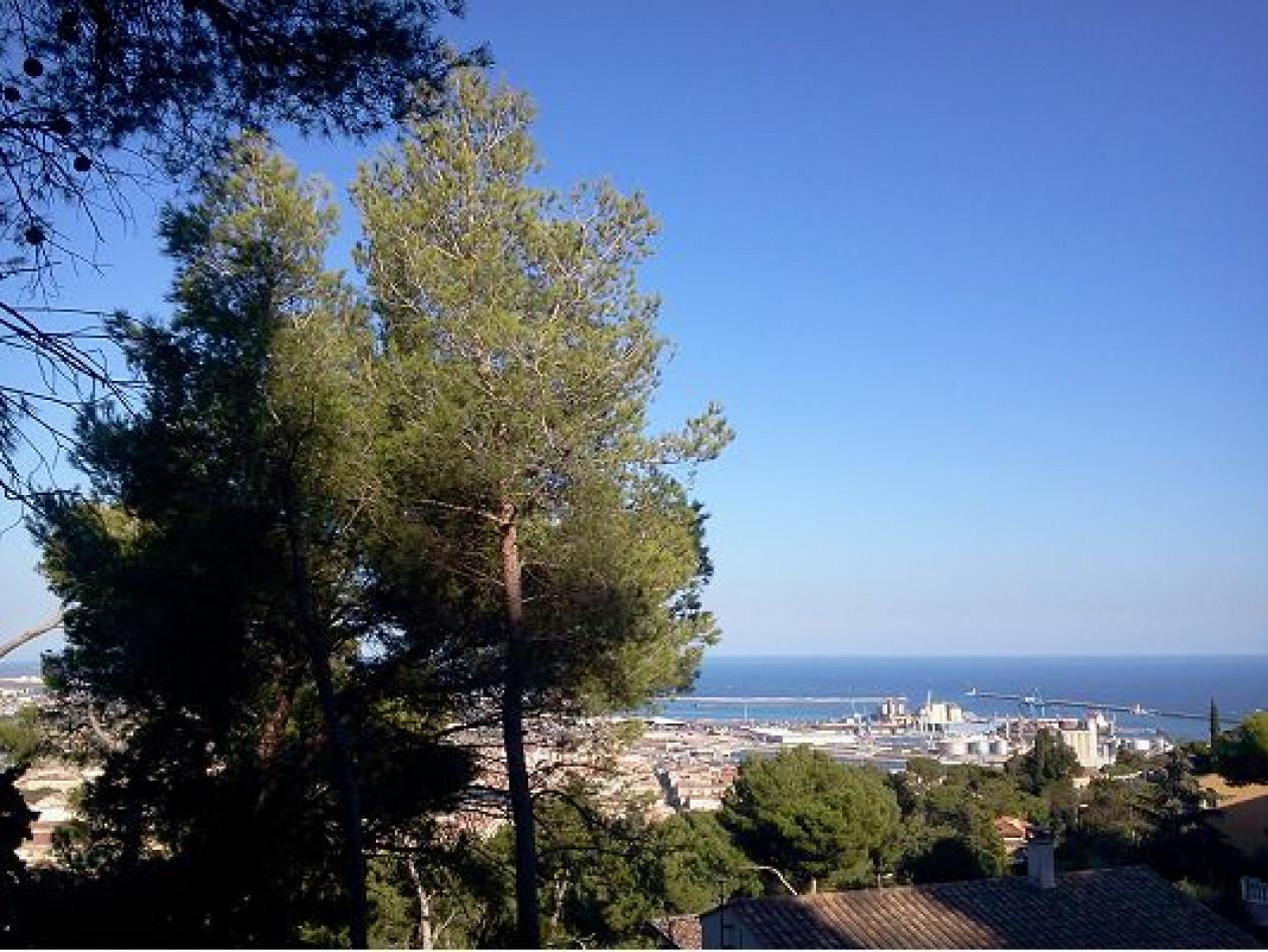 A vendre Sete 342301189 Team méditerranée