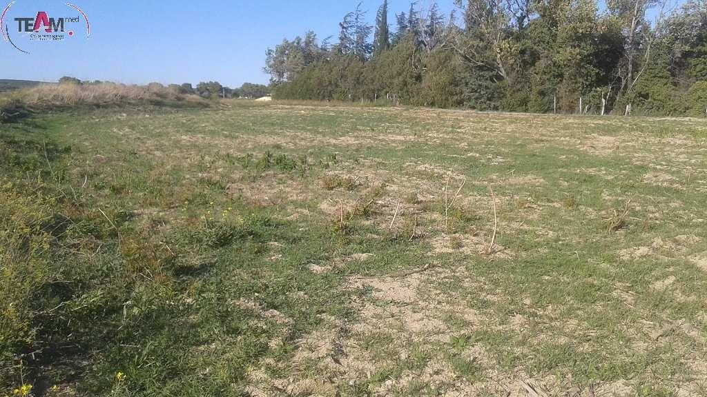 Terrain agricole a vendre 16 for Container sur terrain agricole