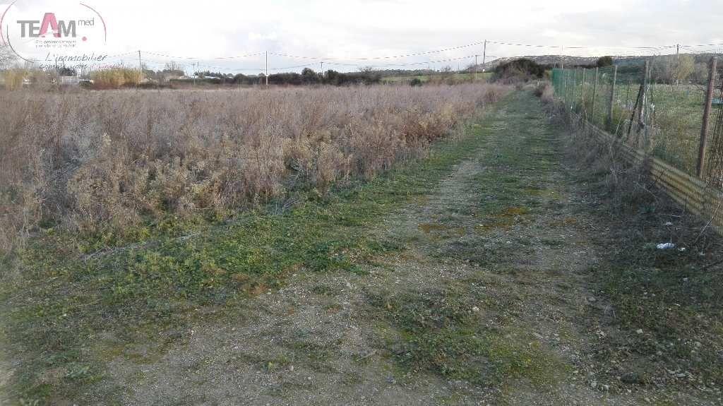Terrain agricole a vendre fabregues for Container sur terrain agricole