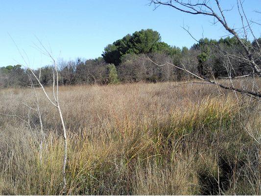 Terrain agricole a vendre 21 for Achat de terrain financement