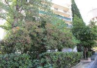 A vendre Beziers 342401144 Agence biterroise immobilière