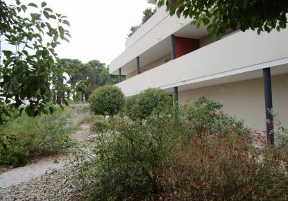 A vendre Beziers 342401368 Ag immobilier