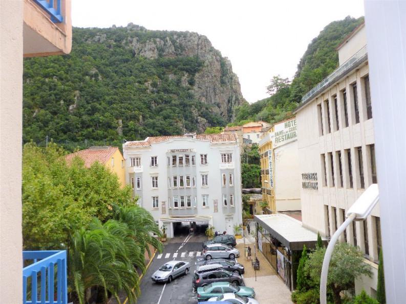 A vendre Amelie Les Bains Palalda 342434396 Artaxa