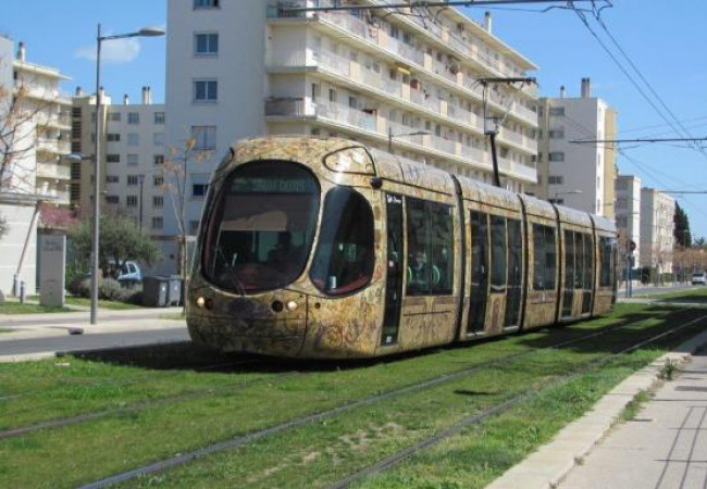A vendre Montpellier 3427216302 Berge immo