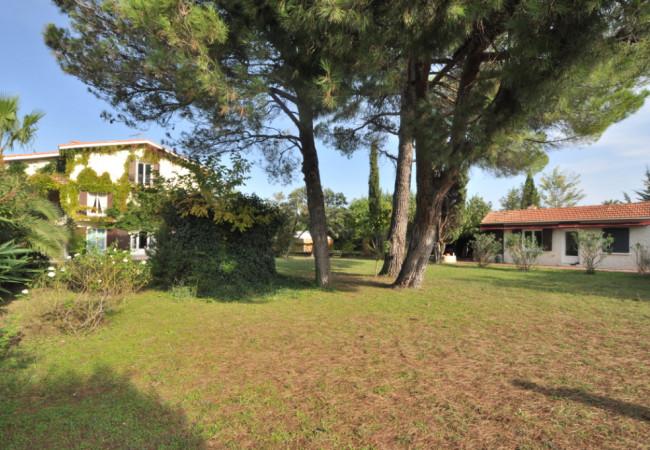 A vendre Castelnau Le Lez 3427216641 Berge immo