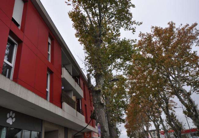 A vendre Castelnau Le Lez 3427216724 Berge immo