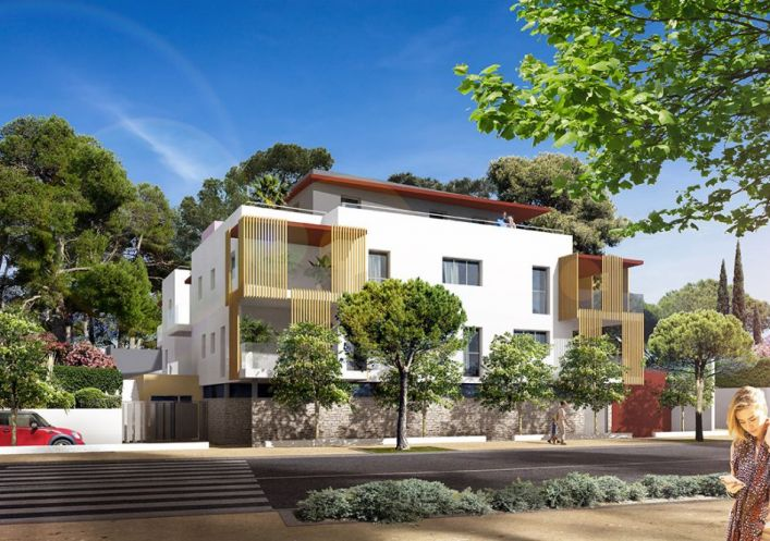 Appartements En Location à Montpellier Berge Immo