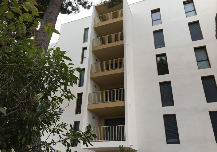 A louer Appartement Montpellier | Réf 3427418102 - Berge immo