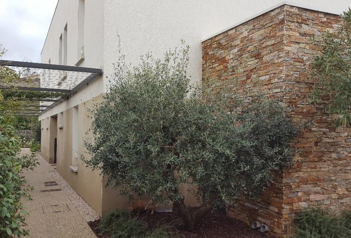 A vendre Castelnau Le Lez 3432425221 Urban immo
