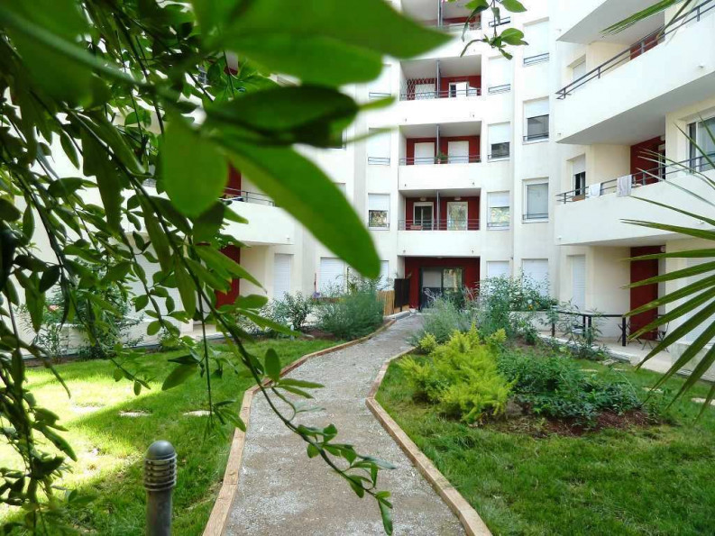 A louer Montpellier 3432513188 Thélène immobilier