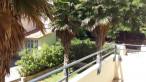 A louer Montpellier 34325309 Thélène immobilier