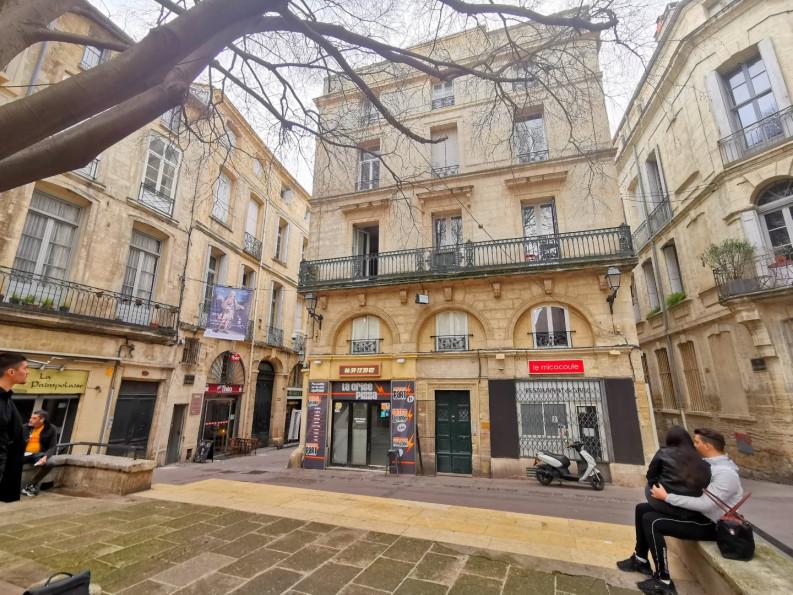 A louer Montpellier 3432557931 Thélène immobilier