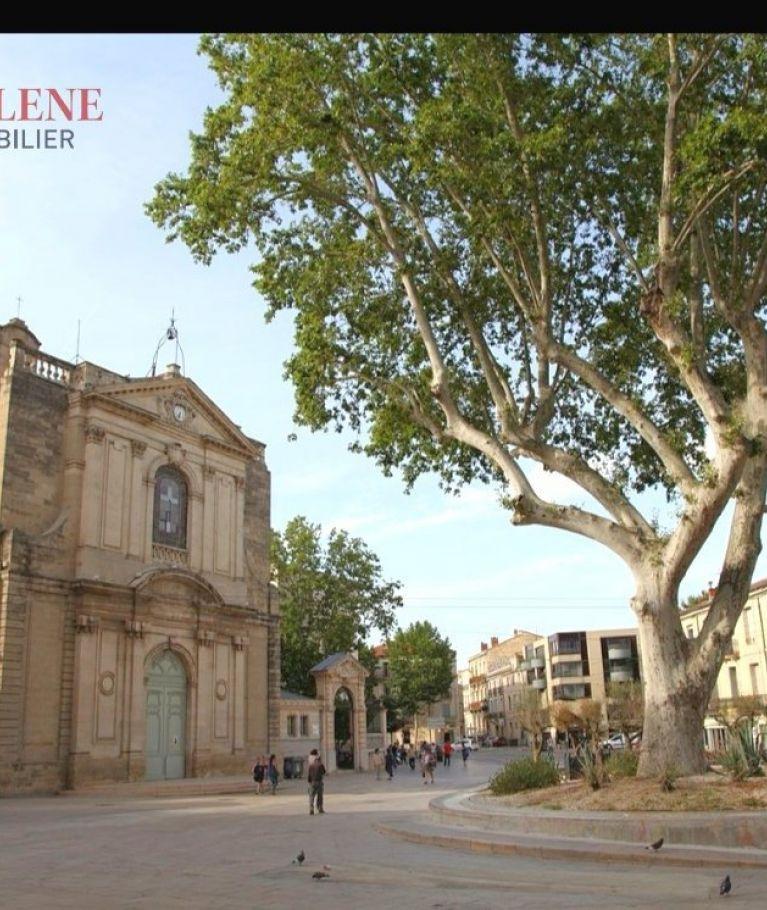 A louer  Montpellier   Réf 3432563241 - Thélène immobilier