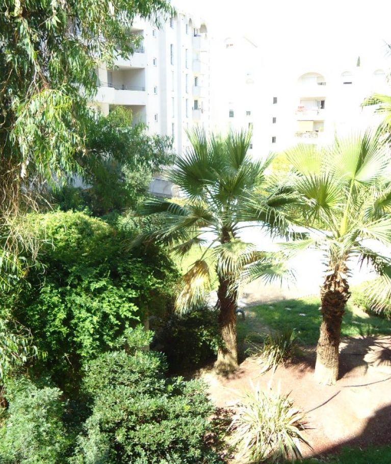A louer Montpellier 3432617360 Thélène immobilier