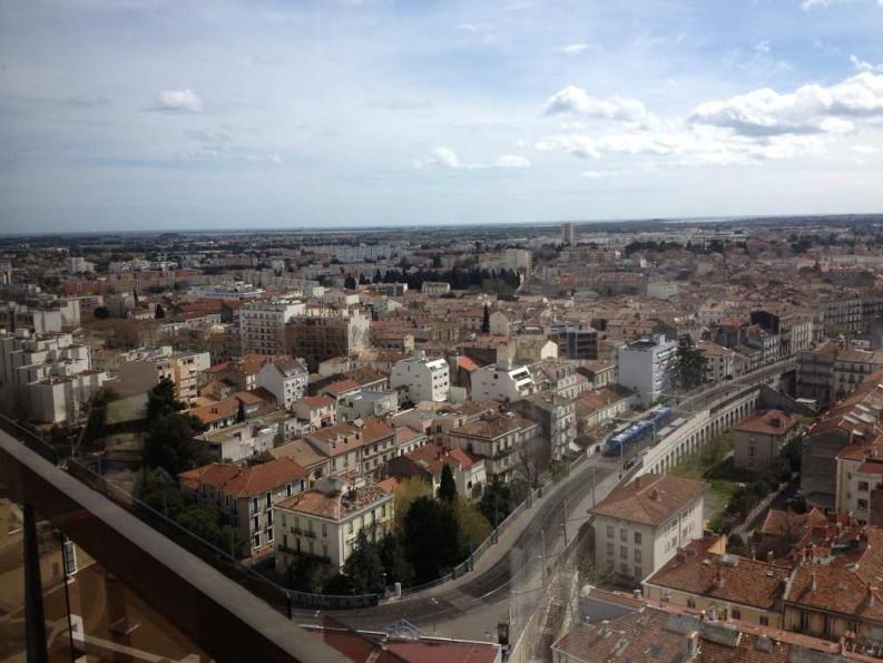 A louer Montpellier 343264766 Thélène immobilier