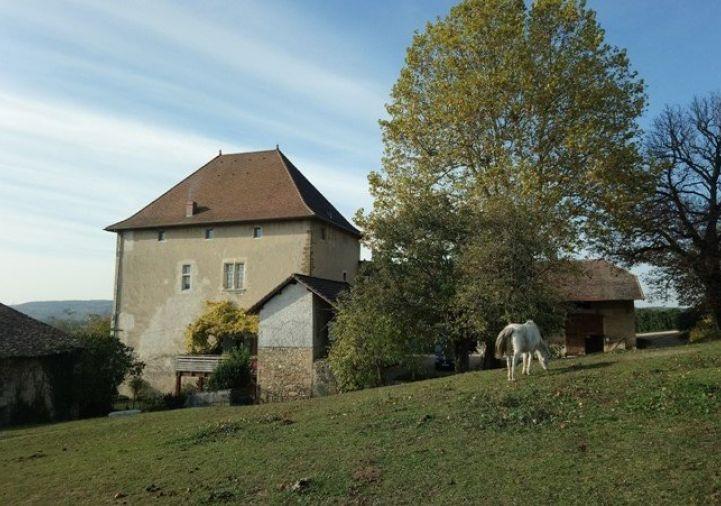 A vendre Grenoble 343302349 Hôtels à vendre