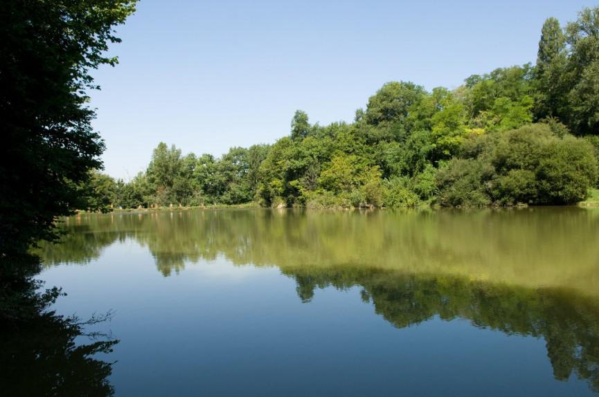 A vendre  Toulouse   Réf 343302366 - Camping à vendre