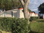 A vendre Montpellier 343302738 Camping à vendre