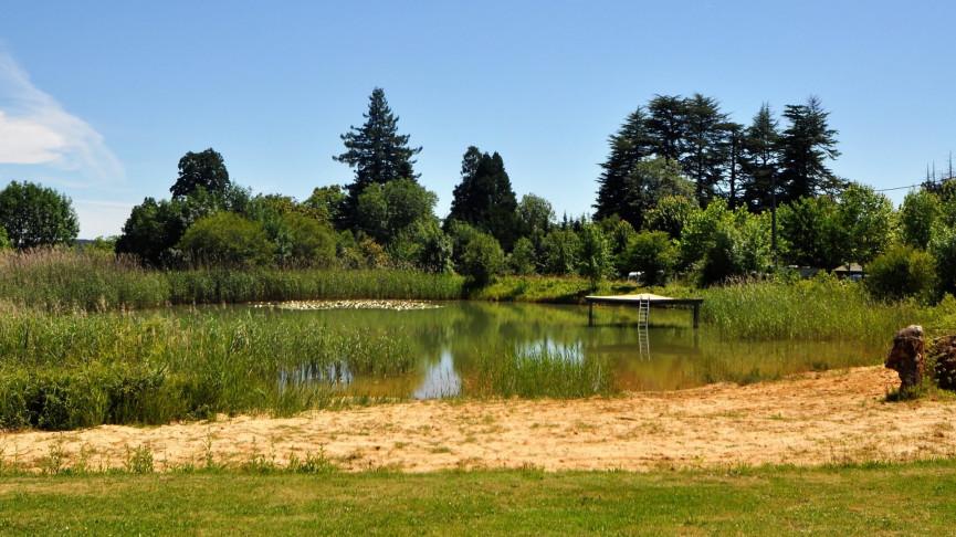 A vendre Bergerac 343302741 Camping à vendre