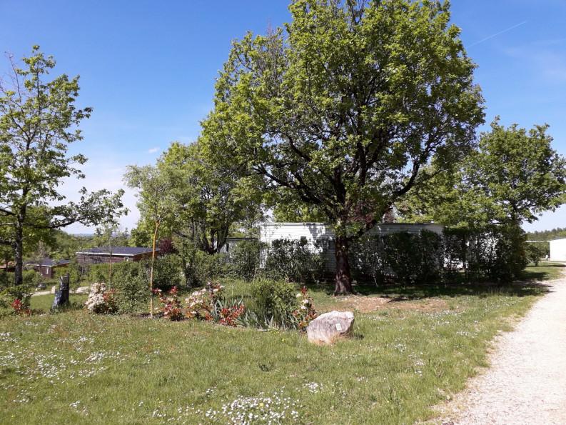 A vendre Rodez 343302767 Camping à vendre