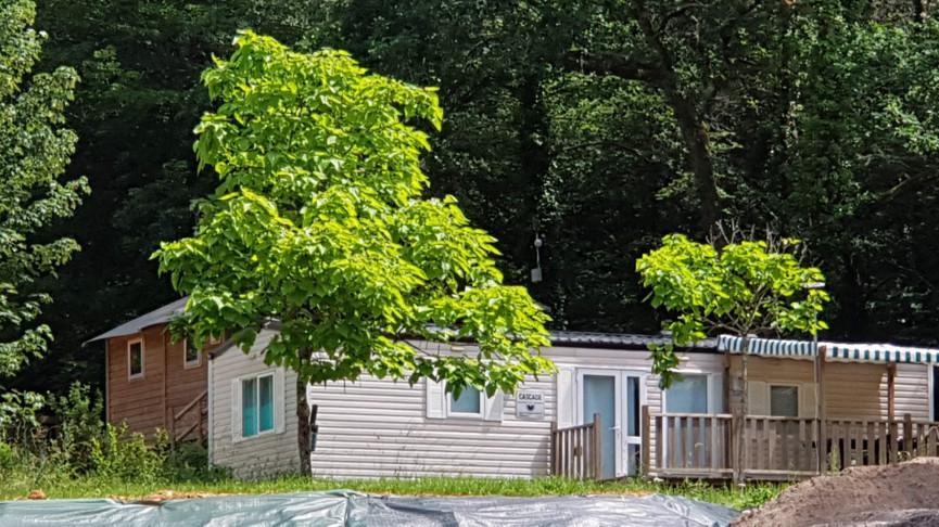 A vendre Perigueux 343302803 Camping à vendre