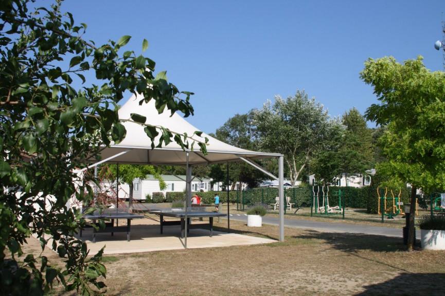 A vendre  Les Sables D'olonne   Réf 343303091 - Camping à vendre