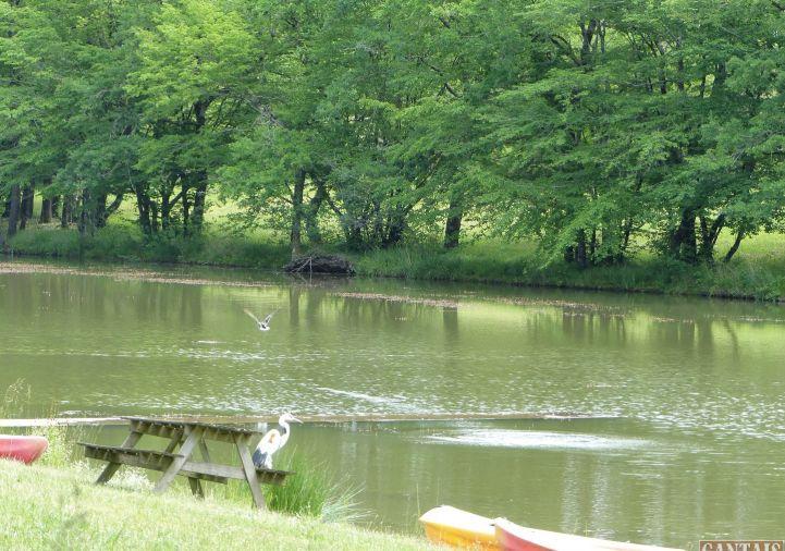 A vendre Camping Angouleme | Réf 343303285 - Camping à vendre