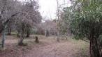 A vendre Perpignan 34330333 Camping à vendre