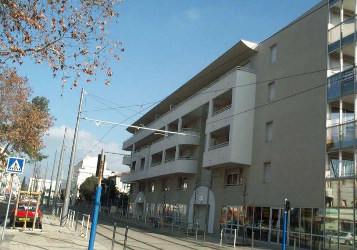 A louer Montpellier 343421364 Egerim conseil