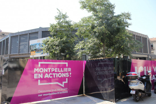A louer Montpellier 343431476 Logimmo