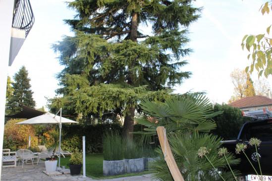 A vendre Castelnau Le Lez 343431513 Logimmo