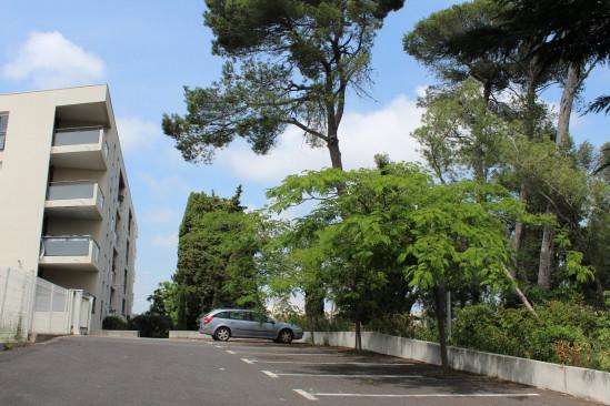 A vendre  Montpellier | Réf 343431593 - Logimmo