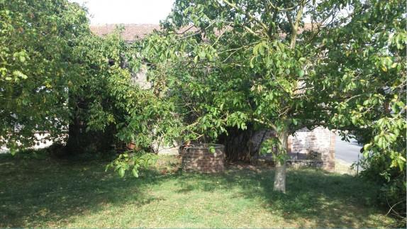 A vendre Saint Sernin Sur Rance 343591096 Senzo immobilier