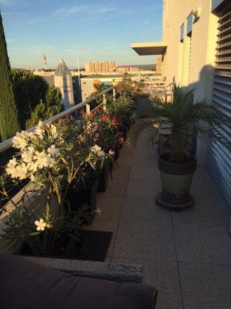 A vendre Montpellier 343593026 Senzo immobilier