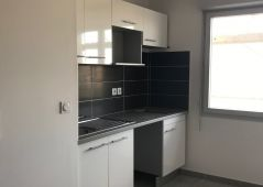 A louer Toulouse 343593205 Senzo immobilier